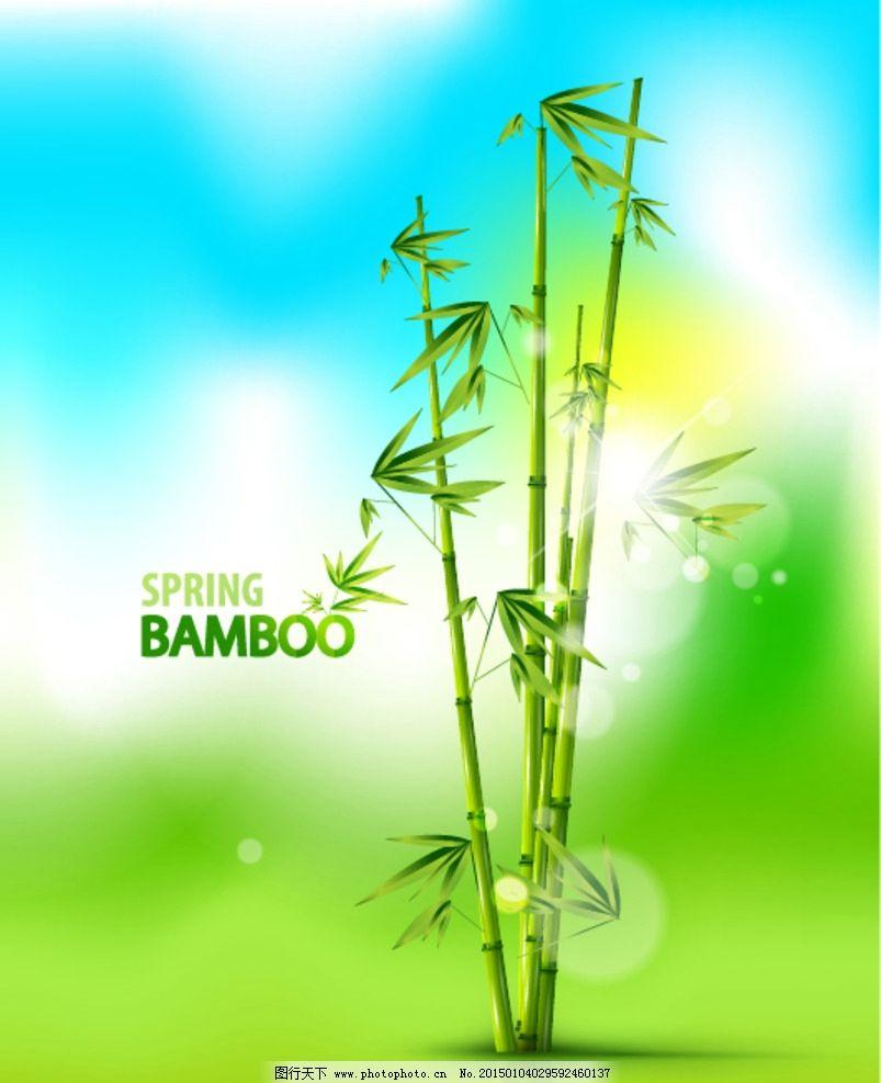 矢量竹子图片