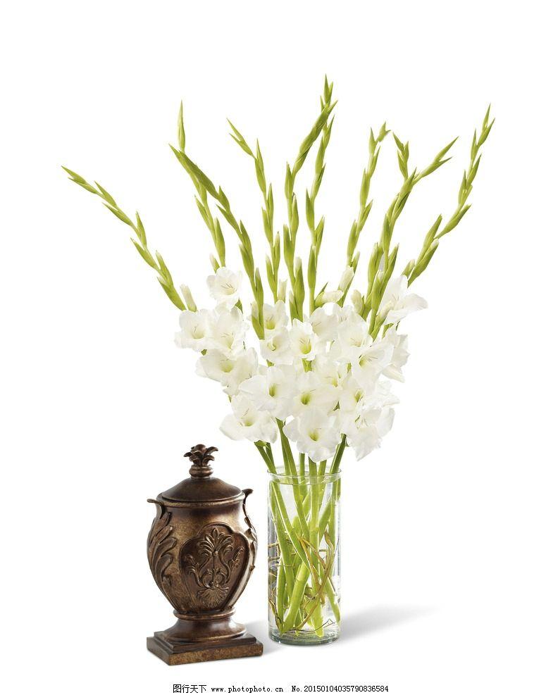 插花艺术 插花造型 居家插花 办公室插花 插花装饰 剑兰 花卉植物