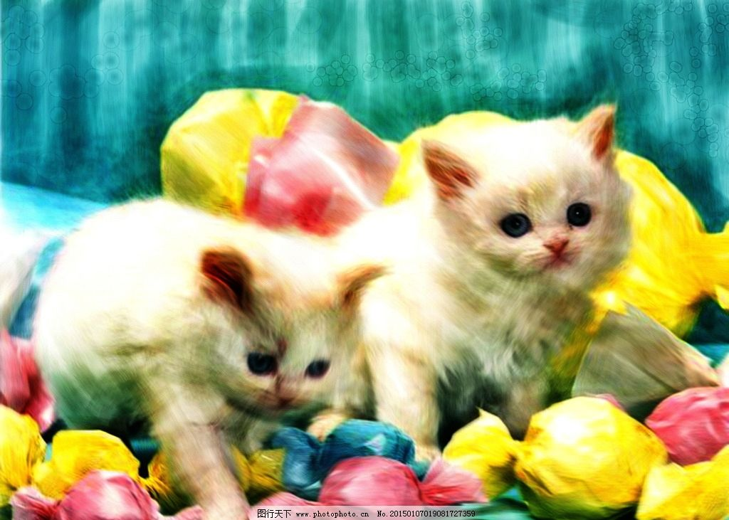 水彩萌宠猫咪 装饰画 水彩画 水粉画 小猫 猫猫 喵星人 咪咪