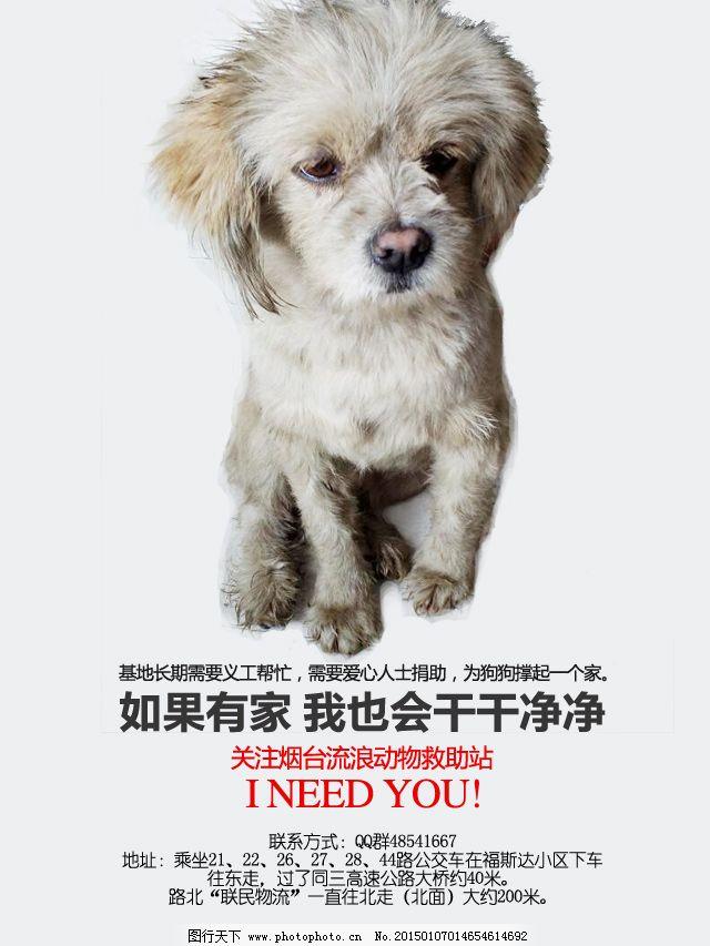救助流浪动物免费下载 流浪狗 救助站 烟台 原创设计 其他原创设计