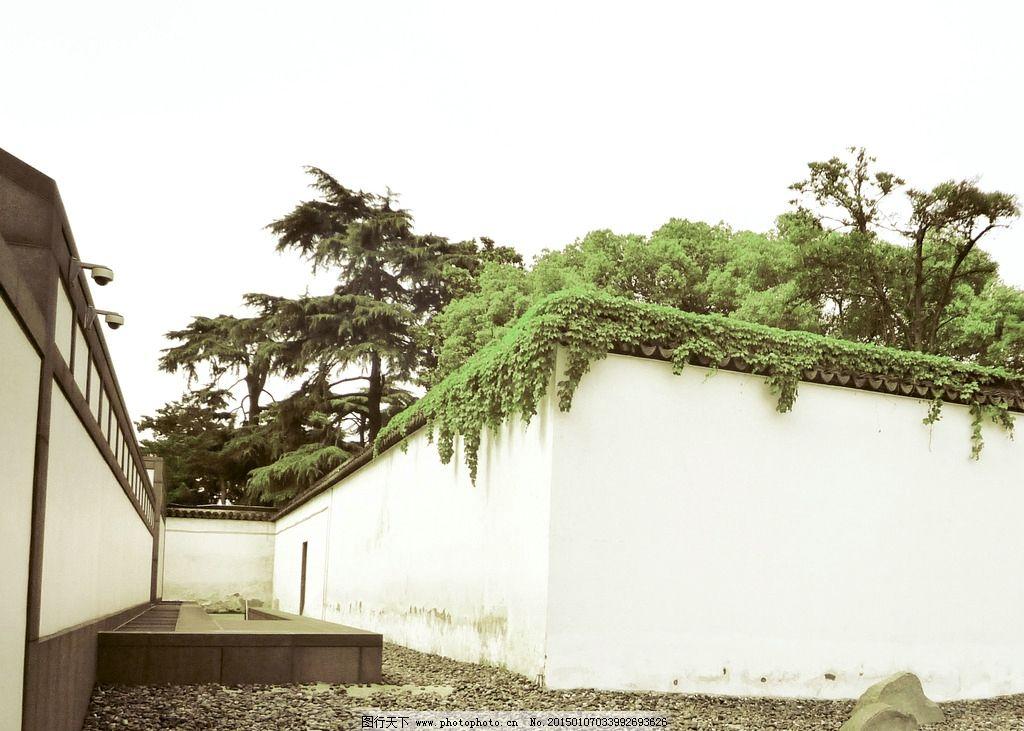 苏州围墙 博物馆 绿植 白墙 摄影 国内旅游图片