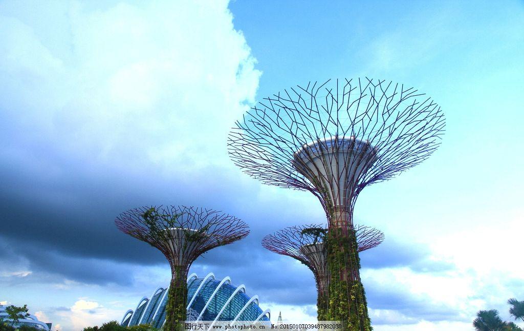 新加坡植物园图片