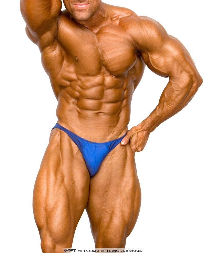 健美肌肉男图片