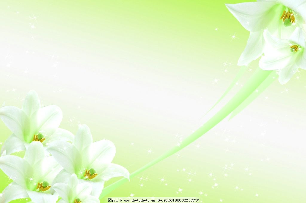 百合花背景墙 电视墙 形象墙 电视背景 装饰画 挂画 花卉 花纹 线条