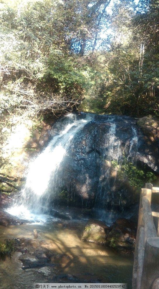 森林 树 树木 山林 水 渓流 山泉 名胜  摄影 自然景观 山水风景 72dp