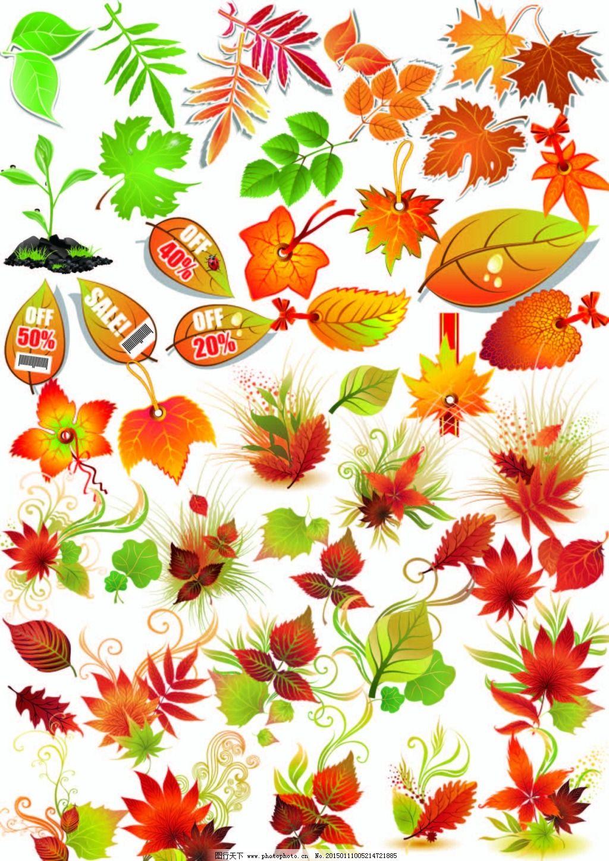 树叶 树叶免费下载 各种树叶 卡通 矢量 矢量图 花纹花边