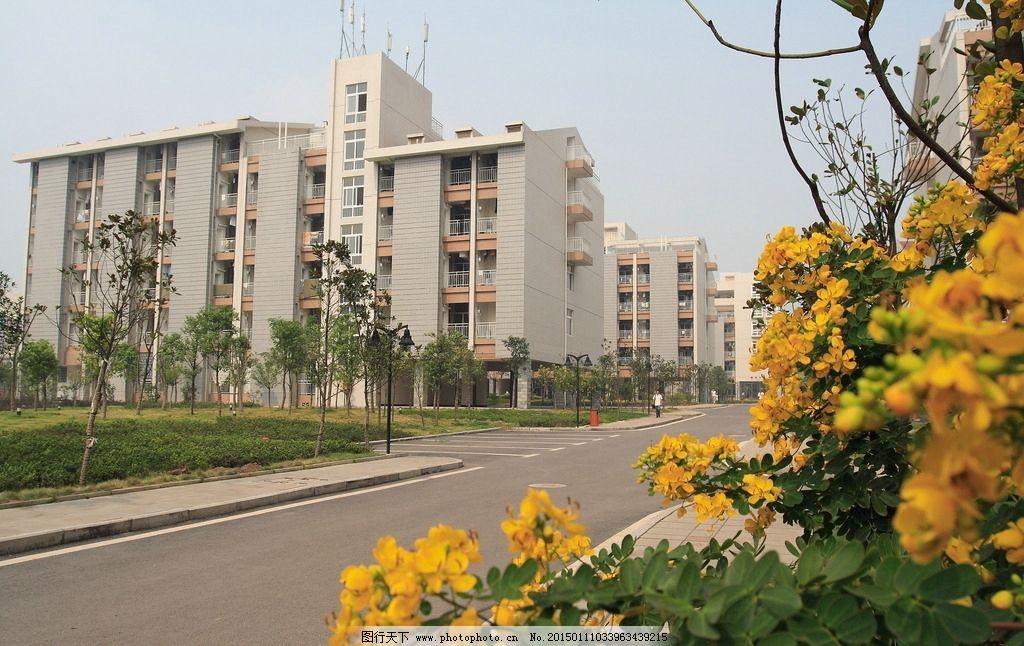 重庆大学校园风景图片