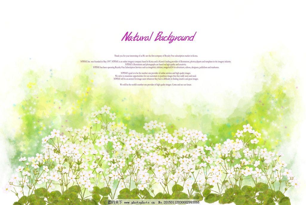 白色小花背景图片