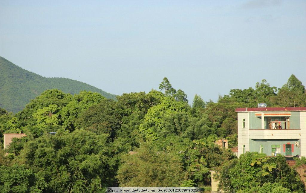 树林 山 房子 小房子 树木 树 绿色 山岭 山林 天空 蓝天 中国海陵岛