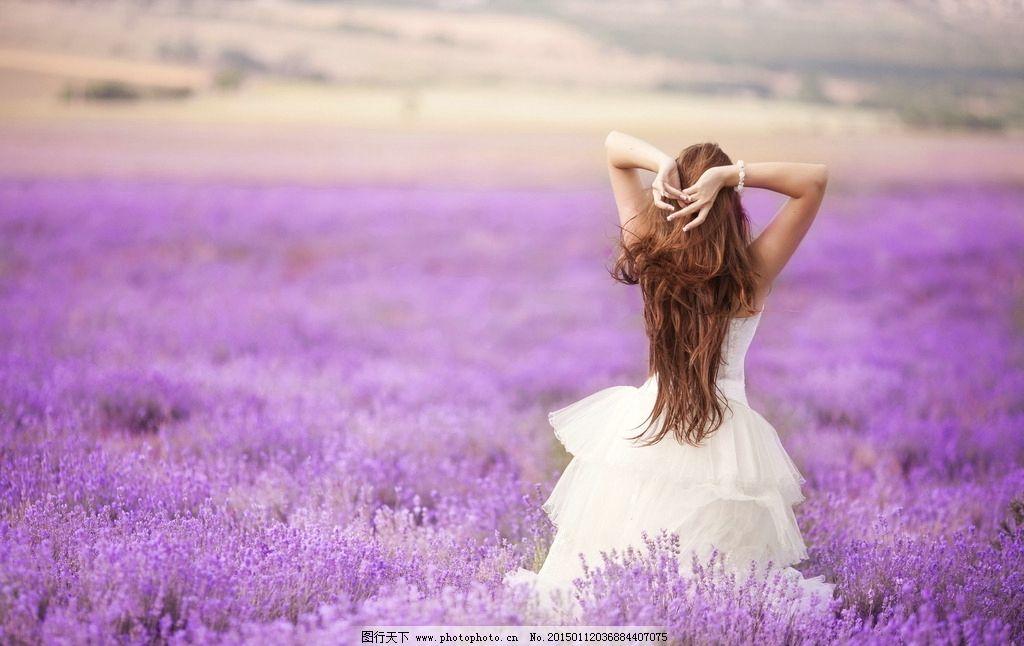 薰衣草 去旅行/薰衣草花丛中的少女图片