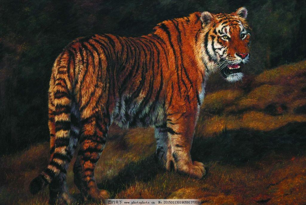 美术 油画 动物画 老虎 猛虎 山岗 设计 文化艺术 绘画书法 72dpi jpg
