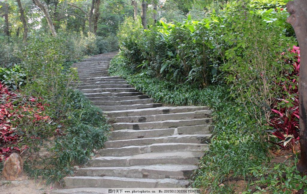 公园 公园台阶 台阶 楼梯 石阶 水泥阶梯 景观 摄影 建筑园林 园林