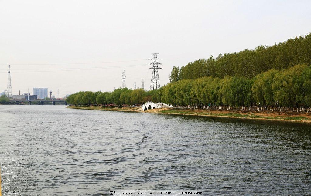 柳树 绿色 春天 运河公园 桥 风景 摄影 自然景观 自然风景 72dpi jpg
