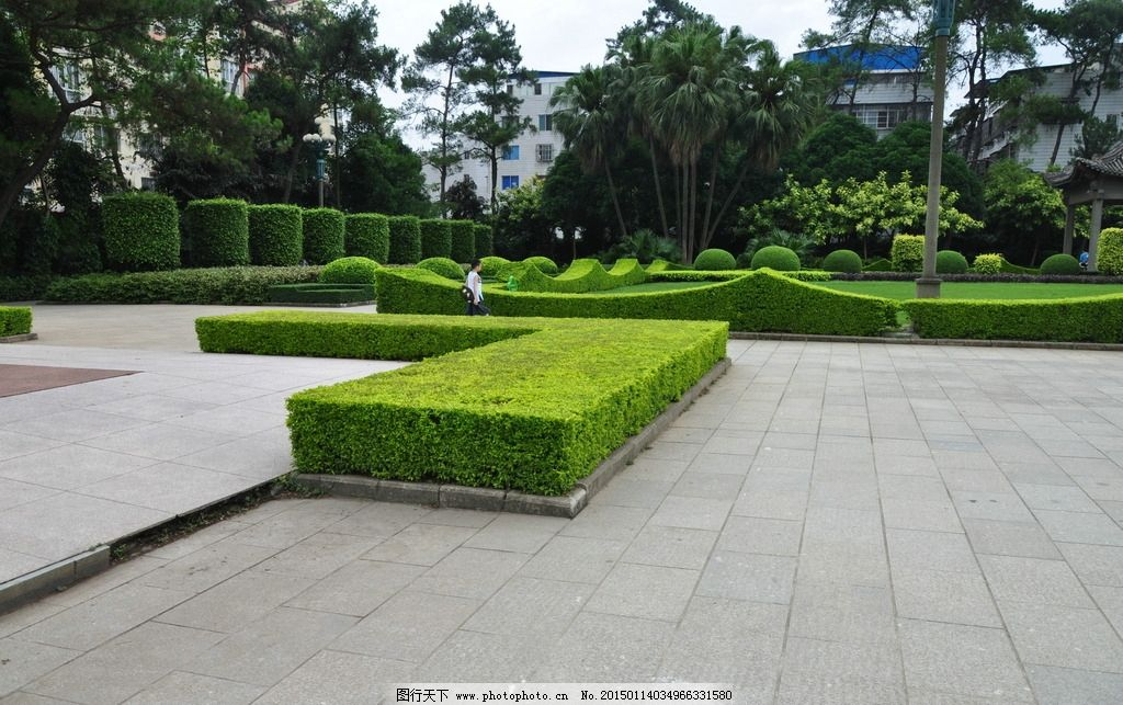 灌木 学校景观 绿篱 公园绿化 小路 热带树 绿树 门楼 建筑景观 自然