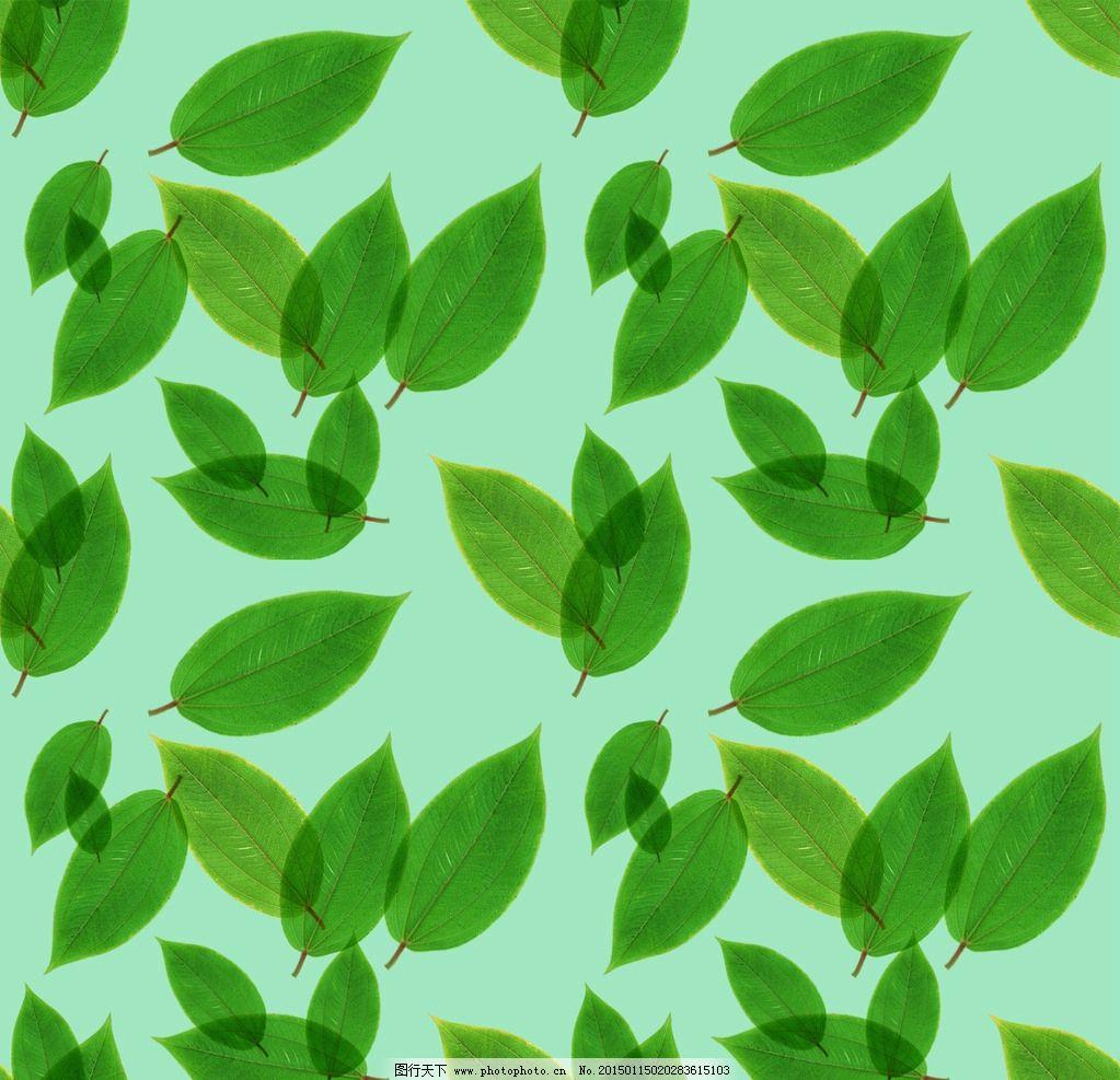 春天 底纹 树叶花纹 四方连续纹样 绿色 小清新 小叶子 碎花布 底图