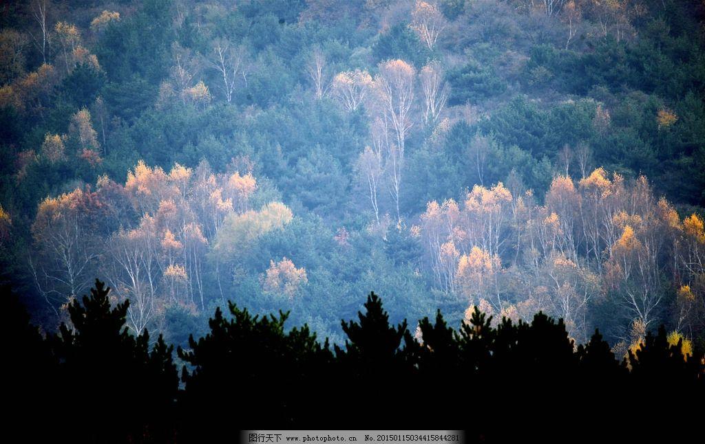 山西 太行山 和顺 森林 自然 摄影 摄影 自然景观 山水风景 72dpi jpg