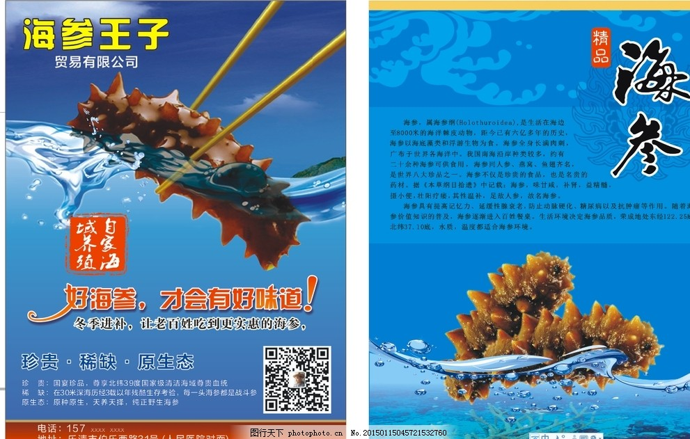 海参传单 珍贵 稀缺 原生态 人参 燕窝 鱼翅 生物世界 海洋生物