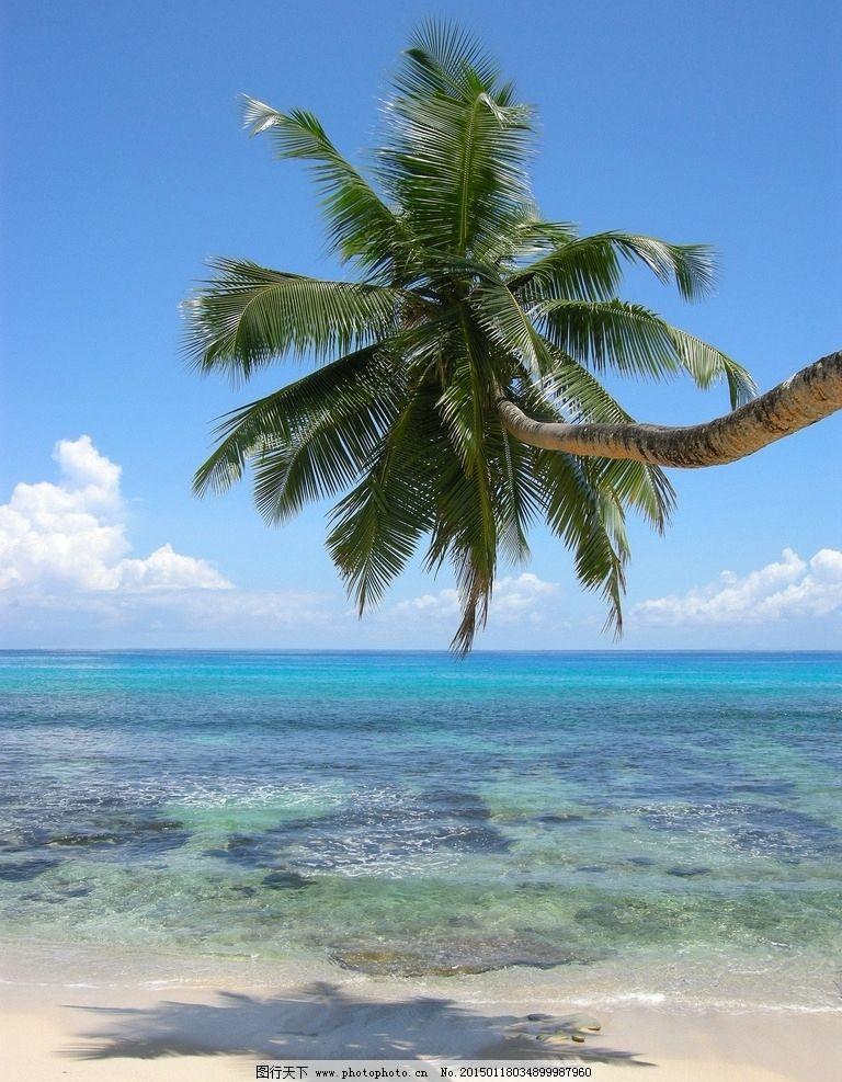塞舌尔 海滩 热带 热带风光 印度洋 南亚 海岸 海洋 海景 自然风景