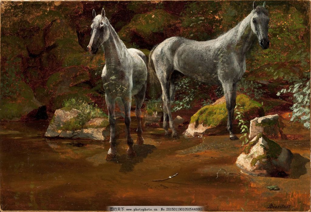 比尔史伯特动物艺术作品图片