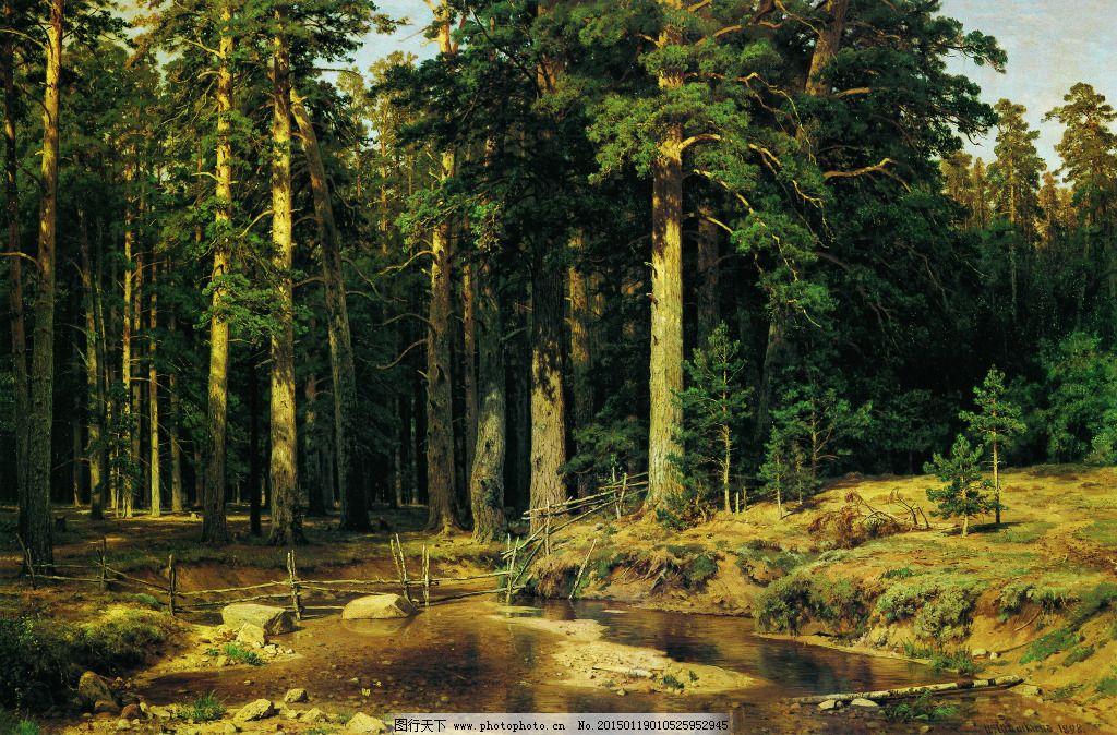 造船木材森林图片