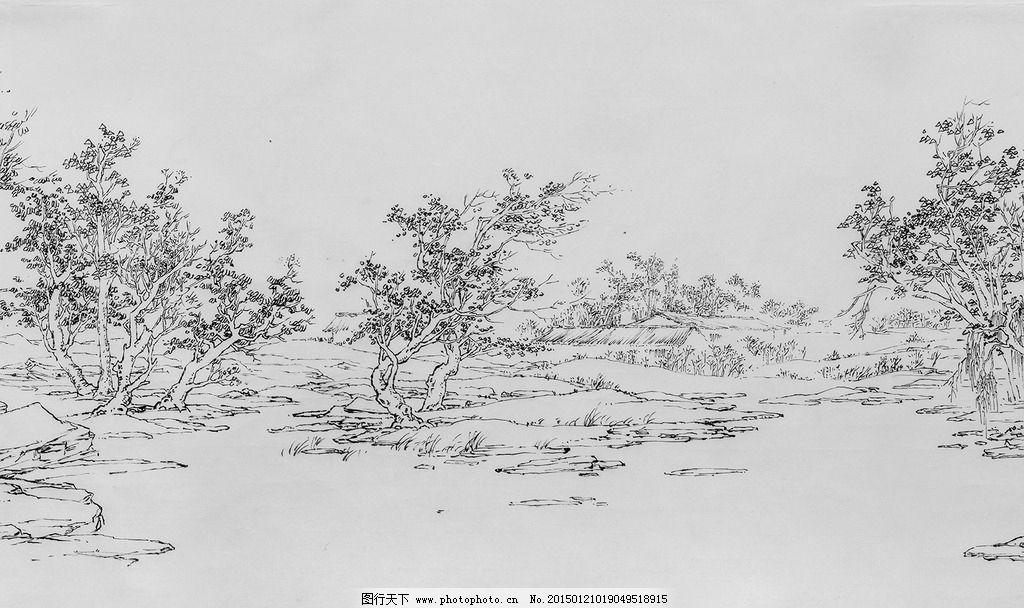 速写 插画 树 风景画 钢笔画