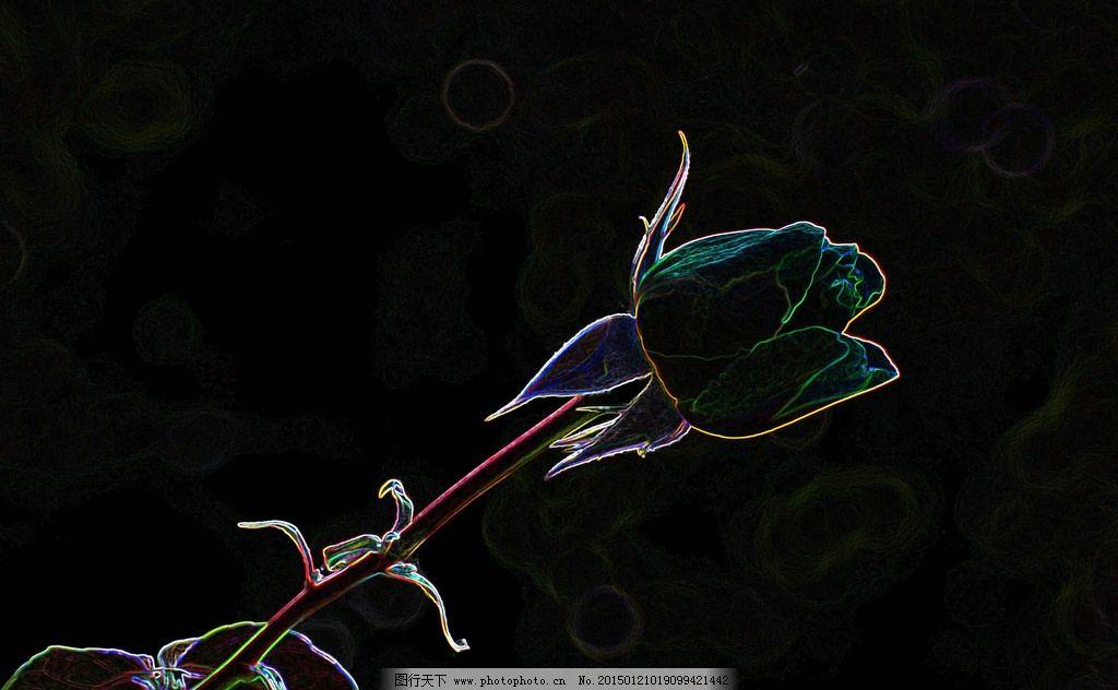 唯美 植物 花 彩绘 绘画 月季 设计 文化艺术 绘画书法 5000dpi jpg