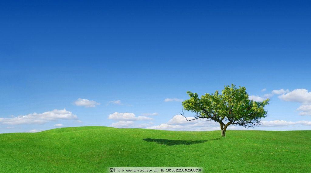 蓝天 白云 草原 草地 唯美 小树 自然风景 摄影 自然景观 自然风景 30