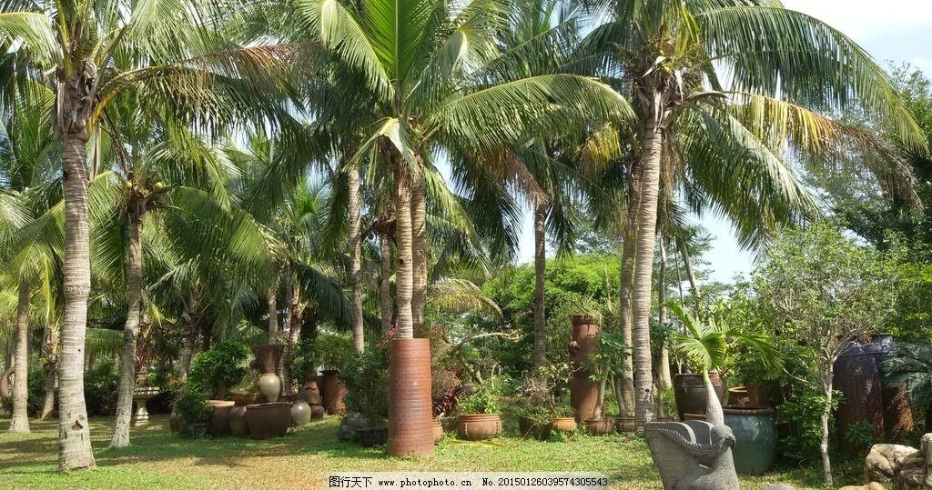 景观设计 园林景观 陶艺品 椰树 景观 园林建筑集锦 摄影 建筑园林