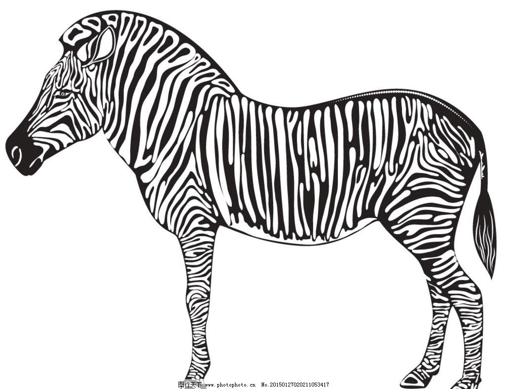 动物花纹图片