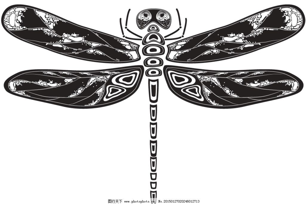 动物花纹 纹理 蜻蜓 装饰花纹