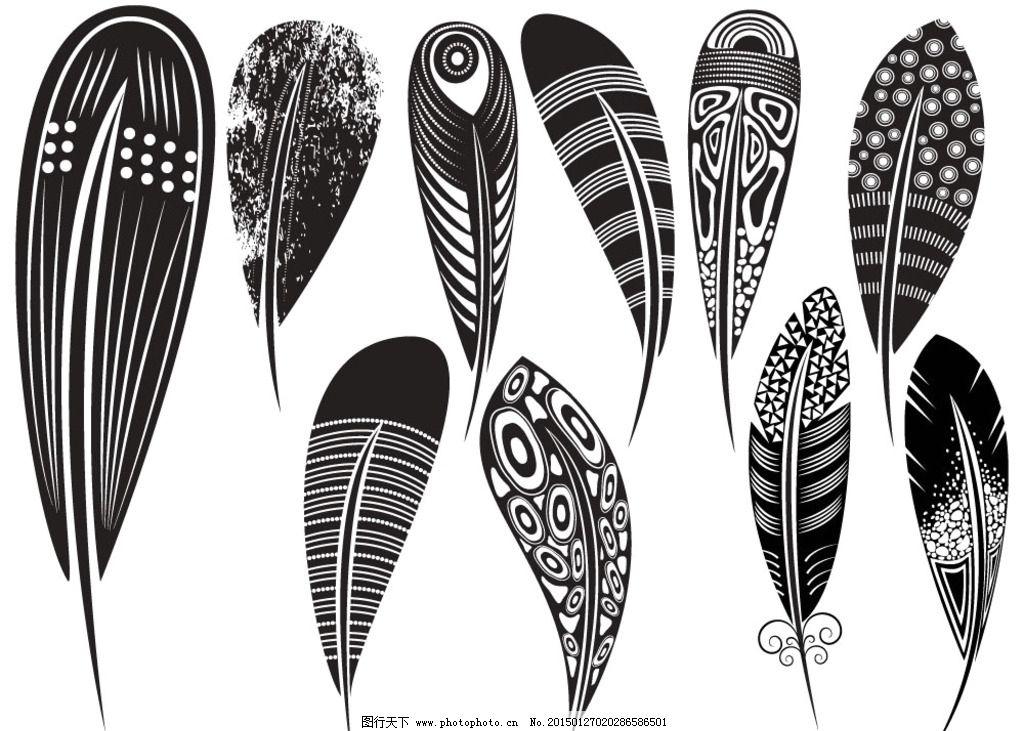 羽毛花纹图片