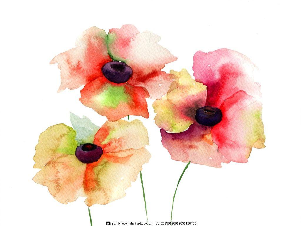 手绘水彩花卉花朵花束图片