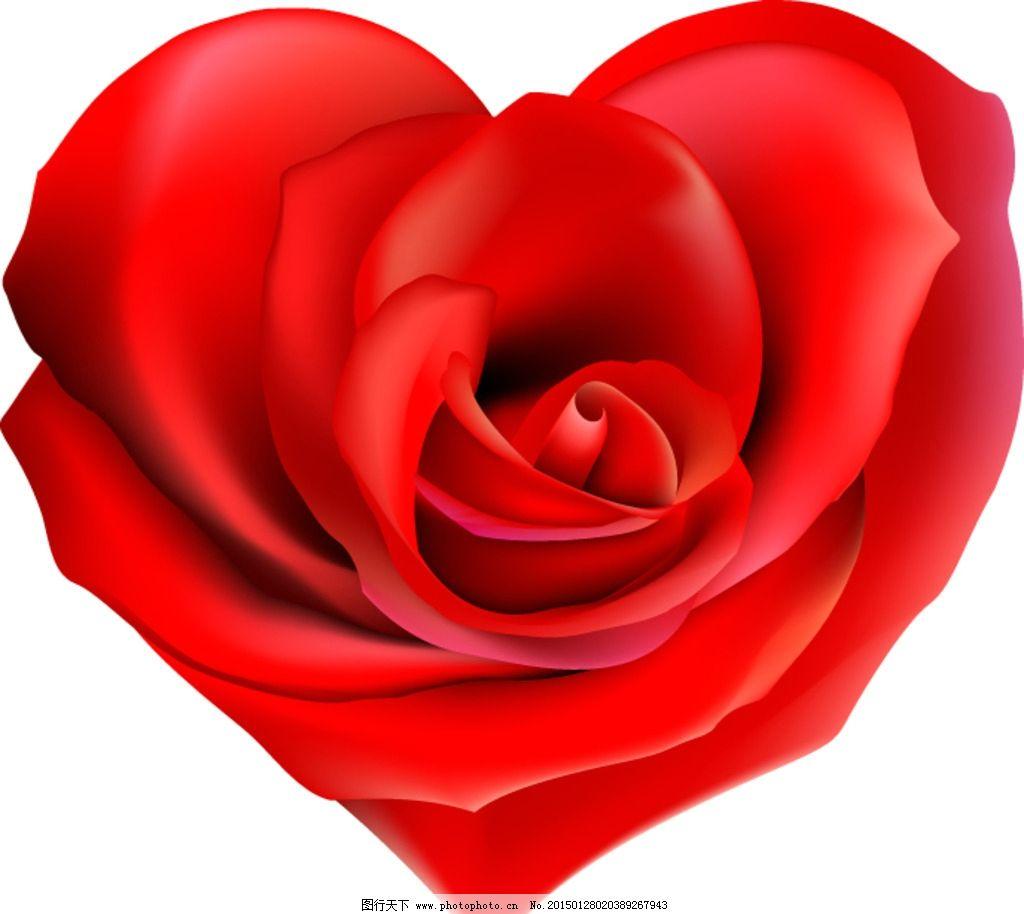 心形 玫瑰花 红玫瑰 矢量 大红花 红花 特写边框 素材 高清 花朵 花卉