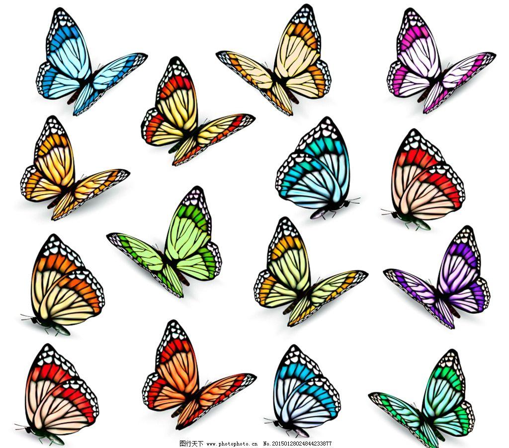 蝴蝶 蝴蝶剪影 彩色蝴蝶 手绘 翅膀 蝴蝶图案 矢量