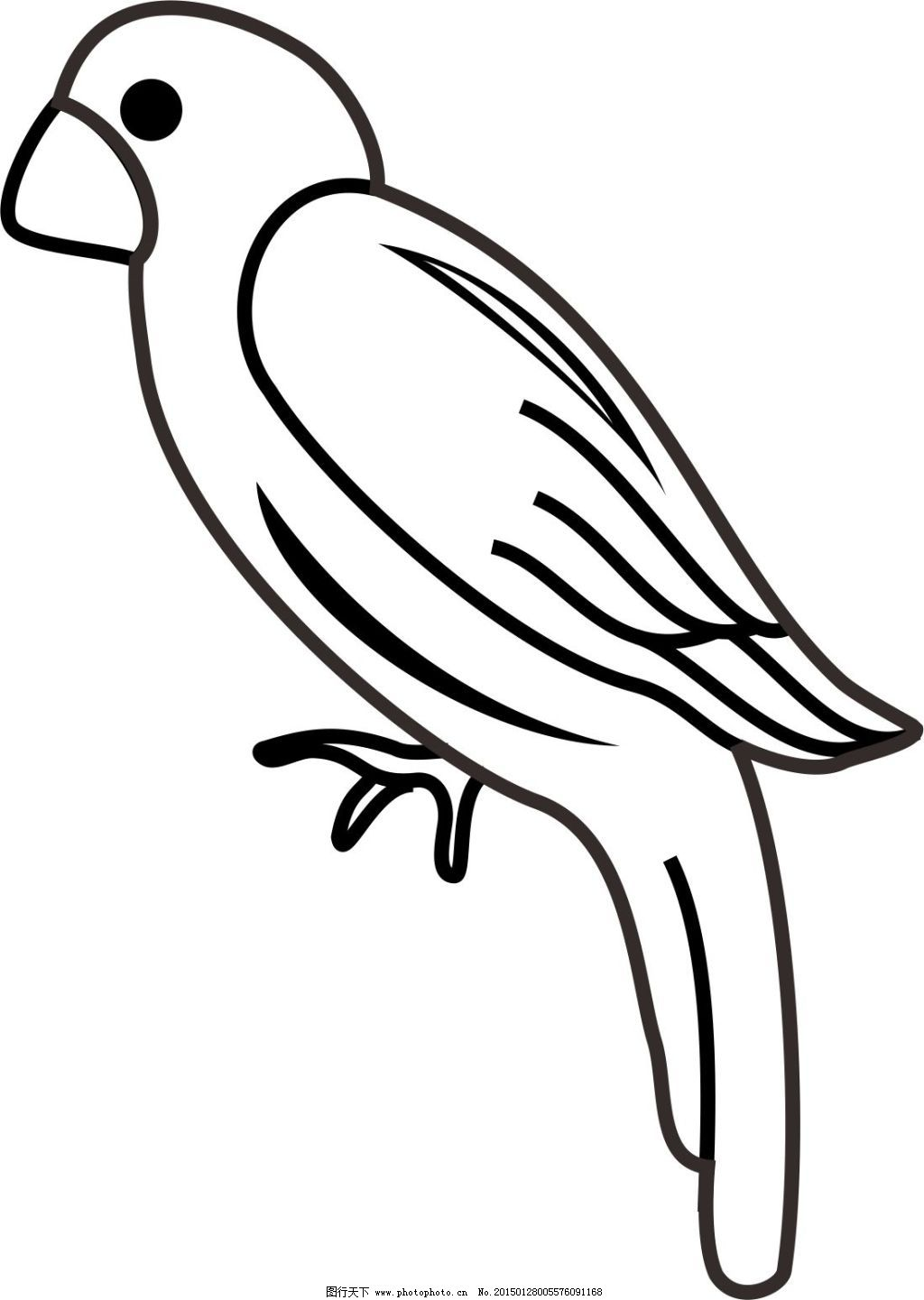 鸟 简笔画手绘