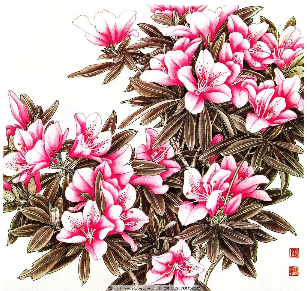 杜鹃花 国画 花 白色花 国画杜鹃花 设计 文化艺术 绘画书法 300dpi