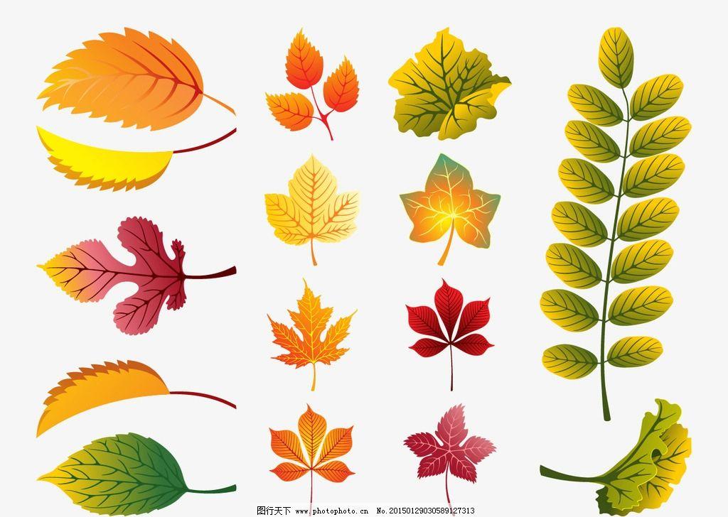 叶子素材 底纹 各种树叶图案 源文件 矢量动植物 设计 广告设计 卡通图片