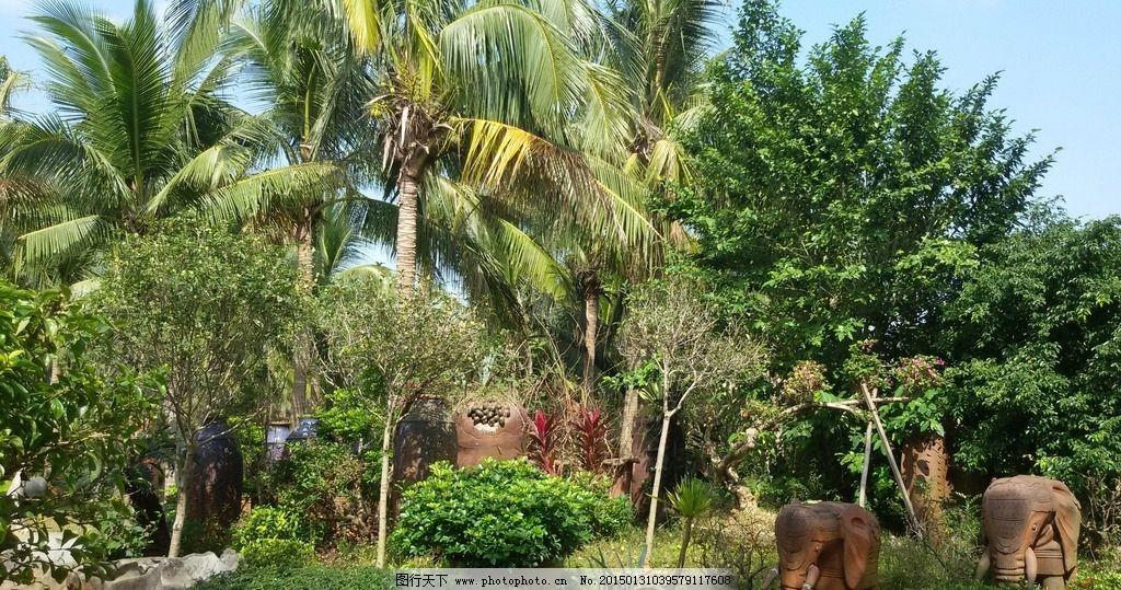 园林景观摄影 陶艺 景观小品 椰树 园林建筑集锦 建筑园林