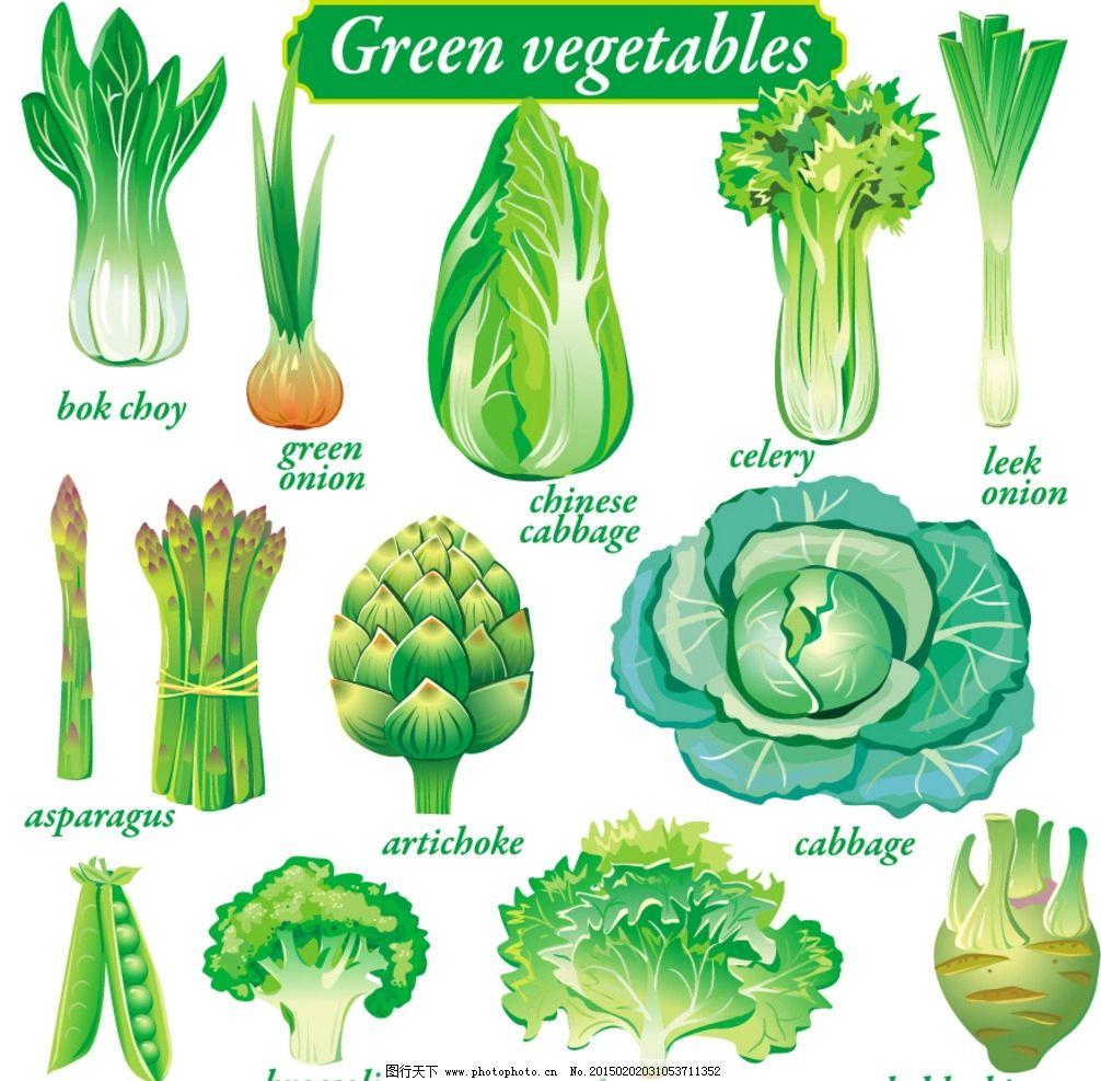 蔬菜大全图片和名字图片