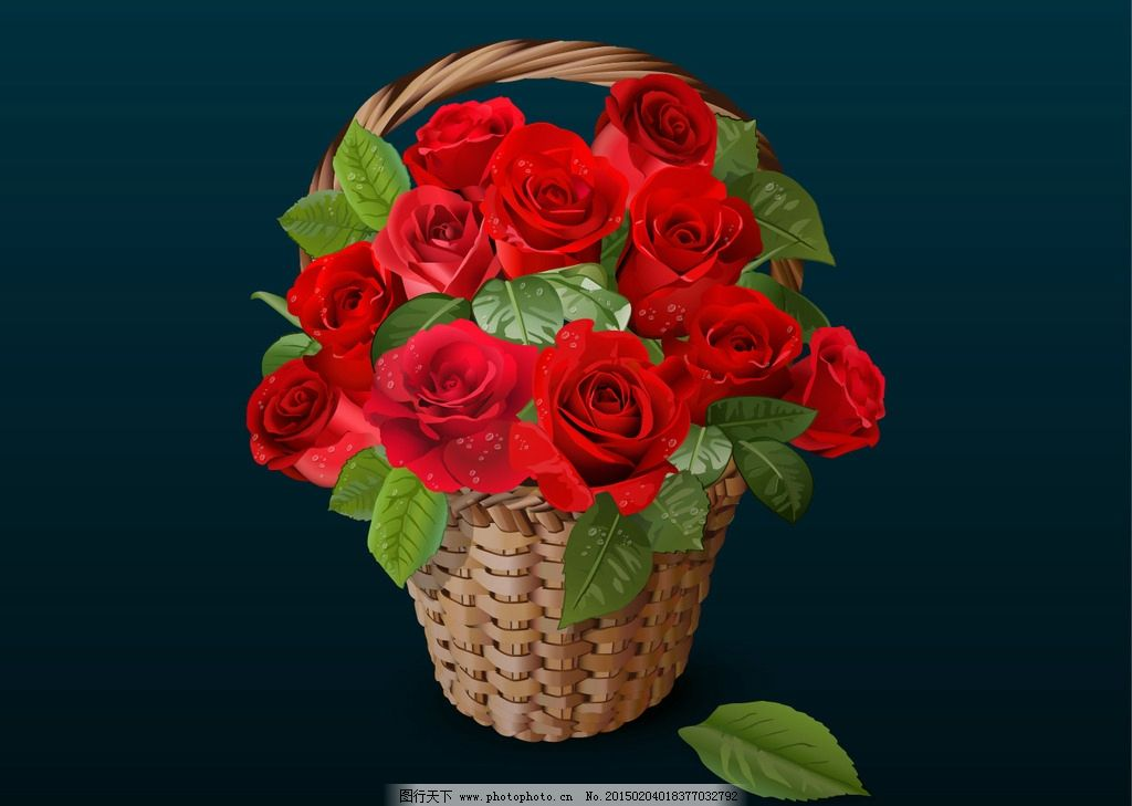 矢量玫瑰花图片_动漫人物_动漫卡通_图行天下图库