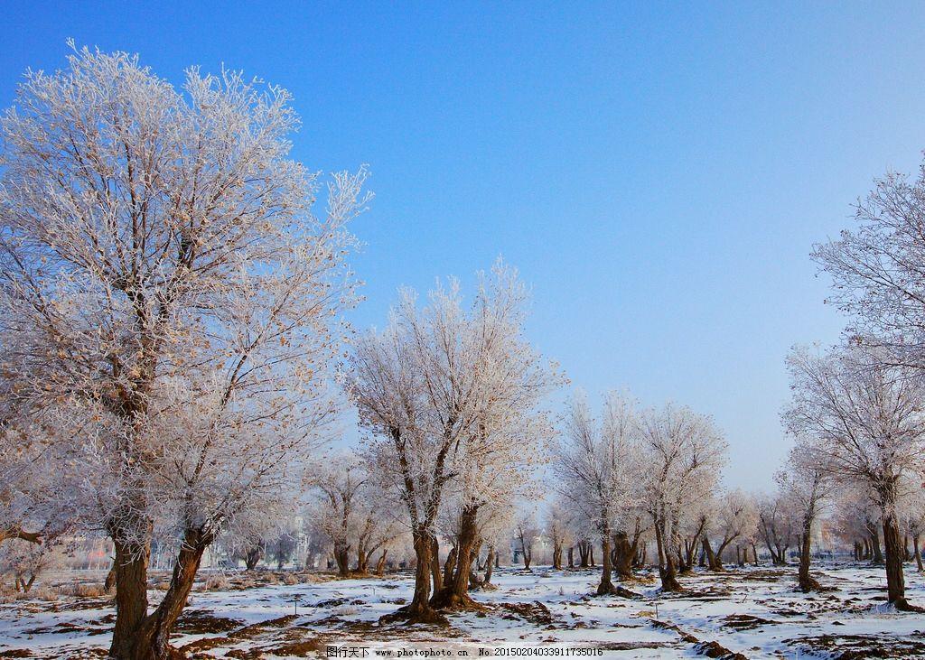 图木舒克 唯美 风景 风光 旅行 新疆 自然 雪景 摄影 国内旅游