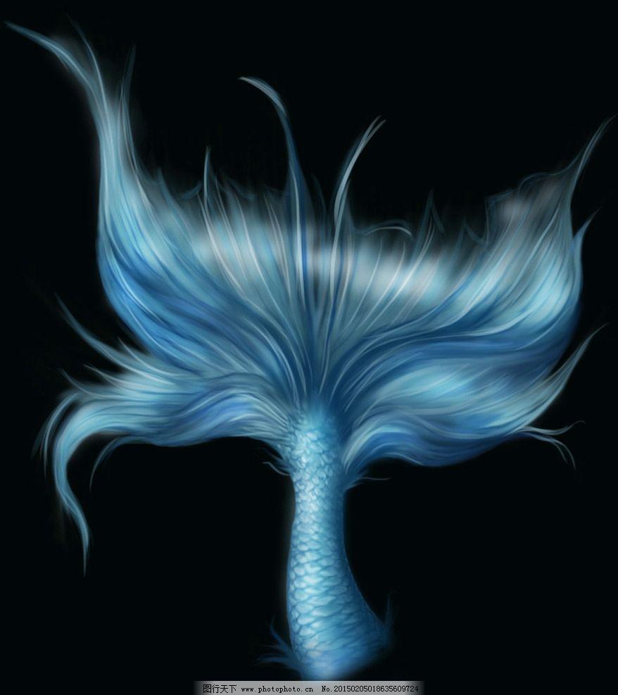 美人鱼尾巴图片