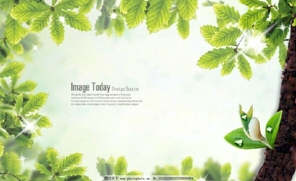 清新绿色 相框 边框 素材 清新边框 绿叶相框 植物相框 树叶边框 鲜花