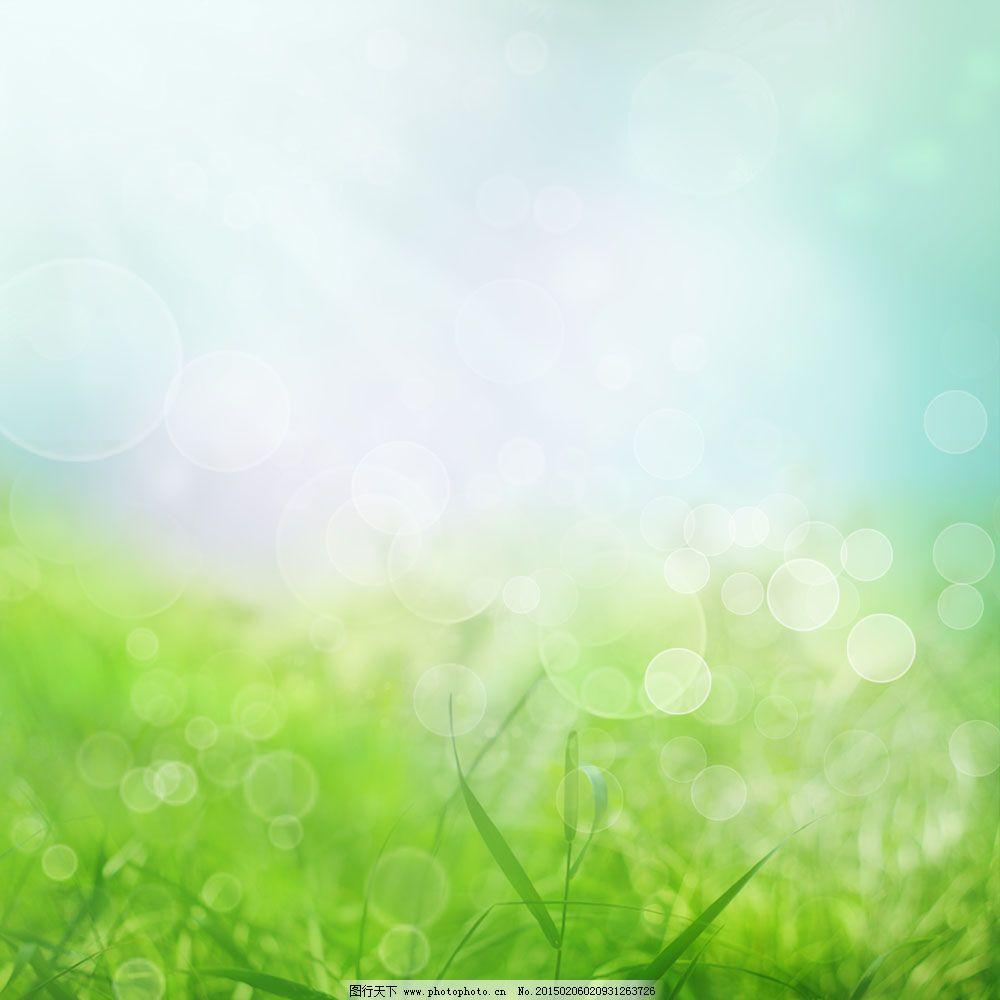 绿叶小清新