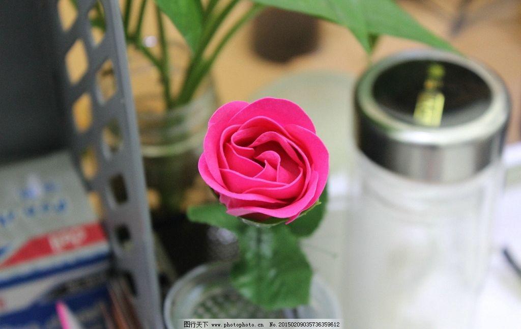 玫瑰 玫瑰花 杯子 鲜花 摄影