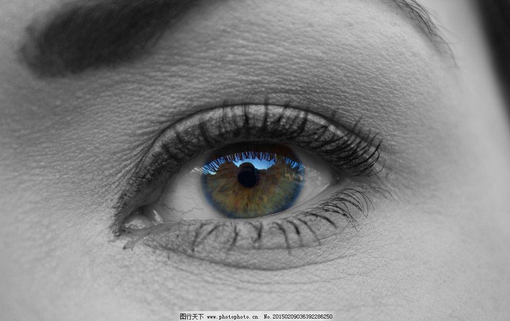 眼睛 大眼睛 眼睛局部 注视的眼睛 眼部特写 女性眼睛 摄影 人物图库