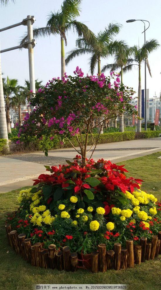 花坛 花卉 景观设计 椰树 景观园林 园林景观 小区环境 园林建筑集锦