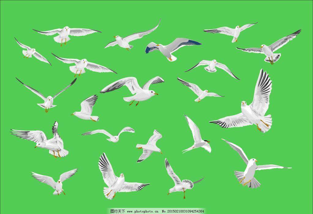 白鸽造型简笔画