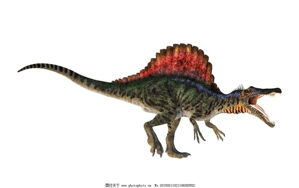 棘龙 白垩纪 侏罗纪 恐龙 食肉恐龙 史前动物