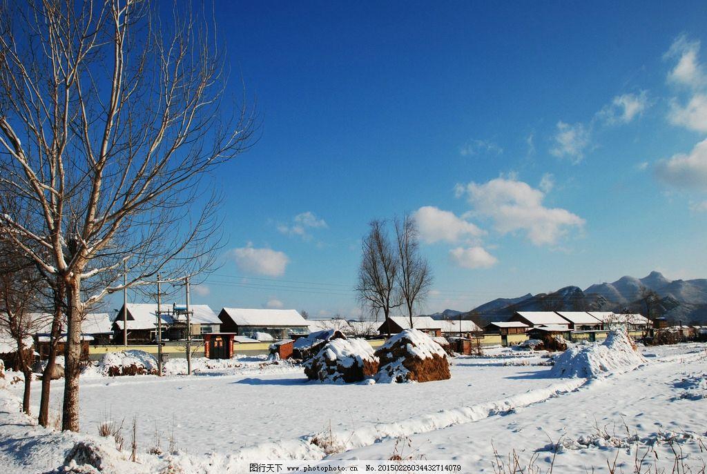 东北山村 冬季 蓝天 蓝天白云 雪地 树 风景摄影 摄影 自然景观 山水